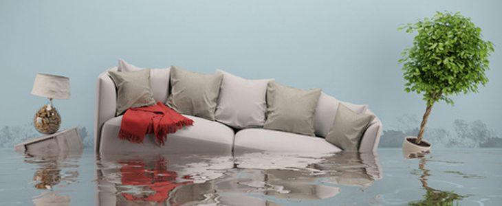 Problèmes d'humidité dans votre logement